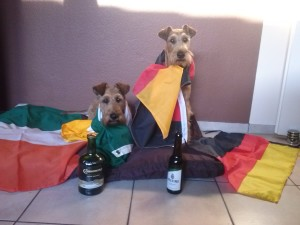 It´s football time:Germany against Ireland